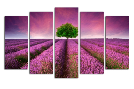 Модульная картина Лавандовое поле